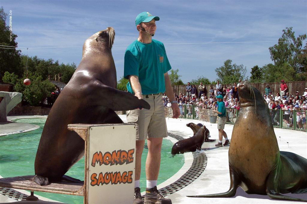 Safaripark monde sauvage - Le monde sauvage meubles ...