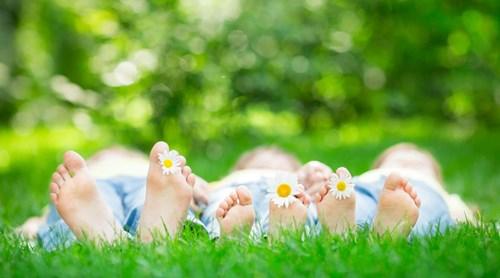 Vacances d'été : détente et activités en Ardenne belge