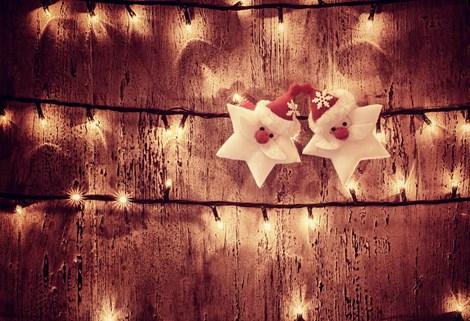 Gîtes, villas et chalets - Semaine de Noël 2020