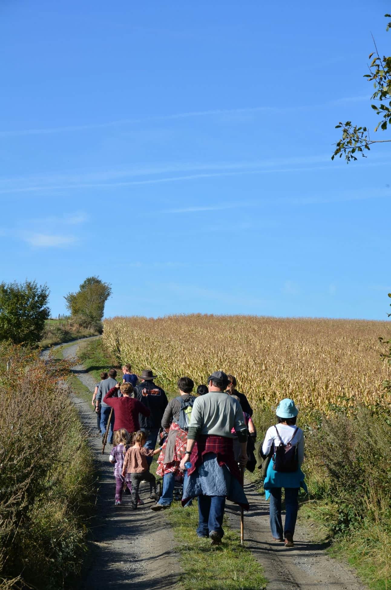 Balades & randonnées organisées