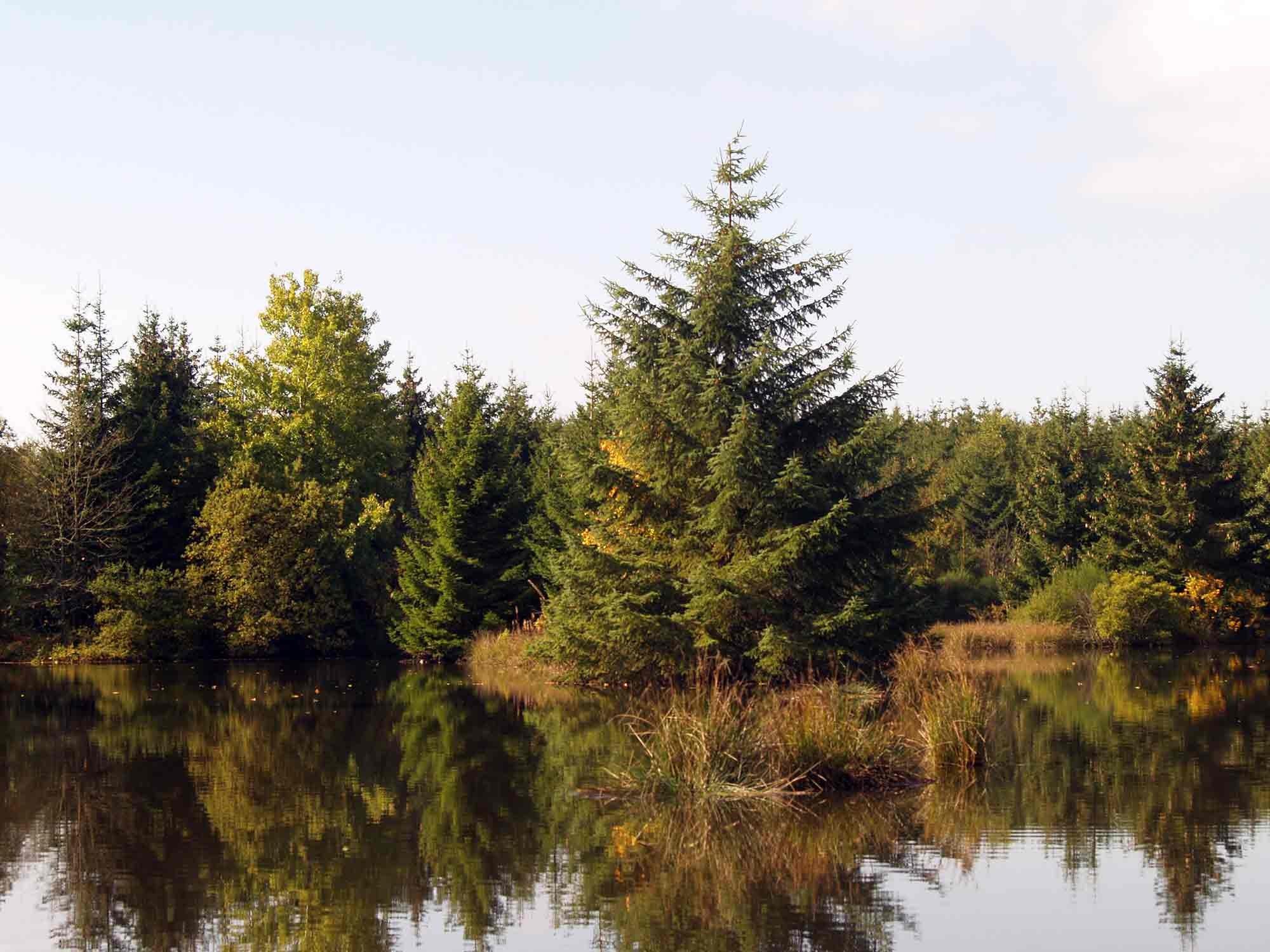ardenne residences blankenheim 53945 region landscapes nature