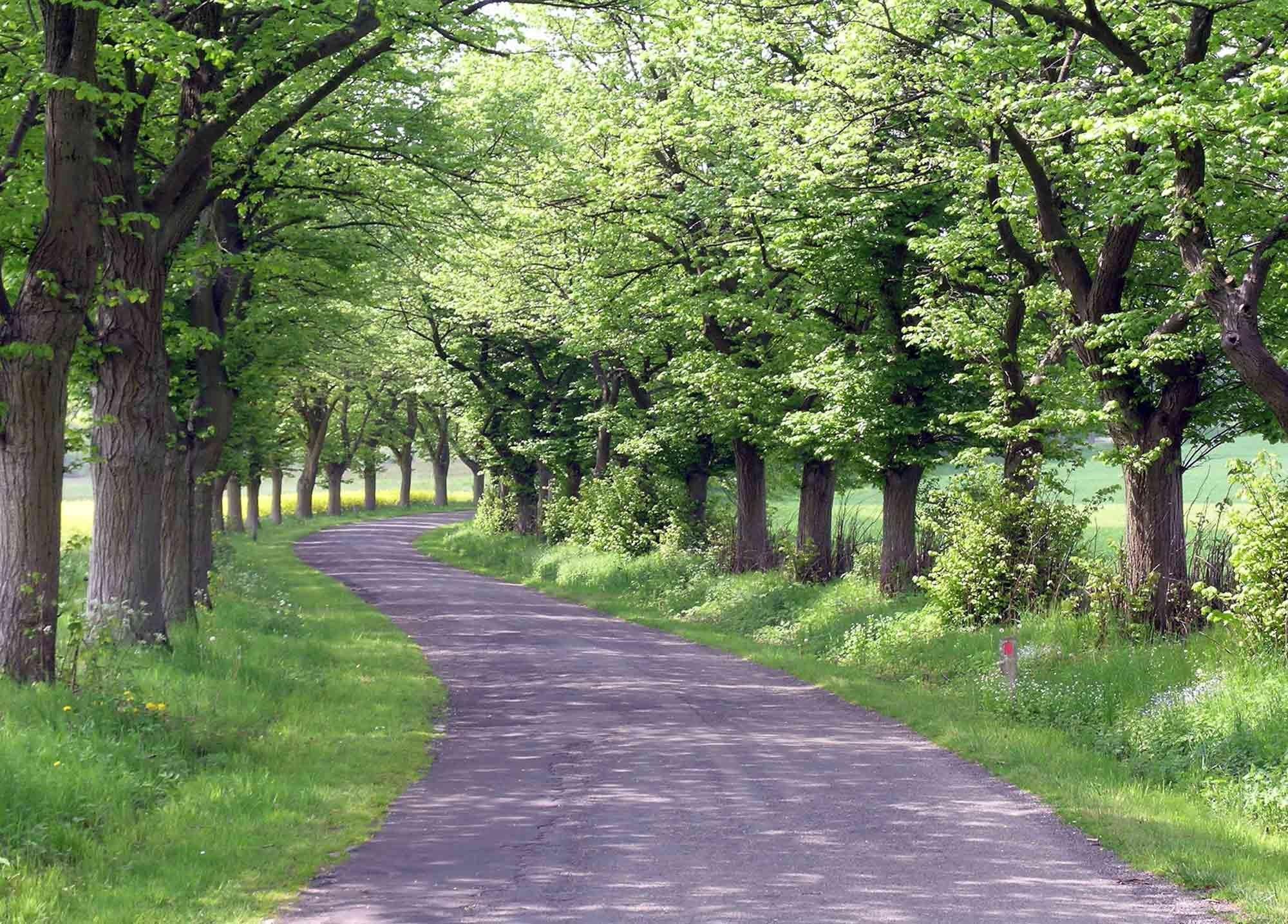 ardenne residences durbuy region landscapes jenneret walk