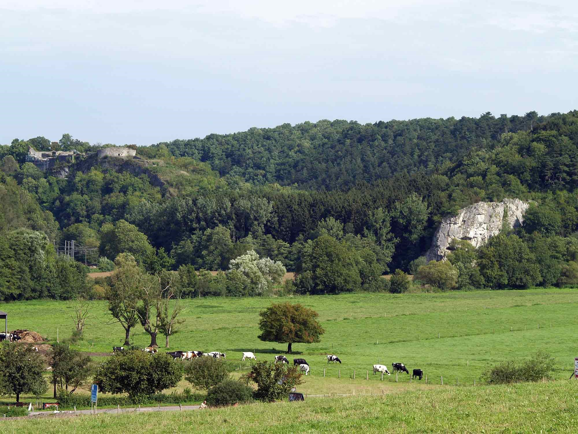 ardenne residences durbuy region landscapes bomal sur outhe nature rocher
