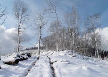 ardenne residences durbuy region landscapes villers sainte gertrude nature