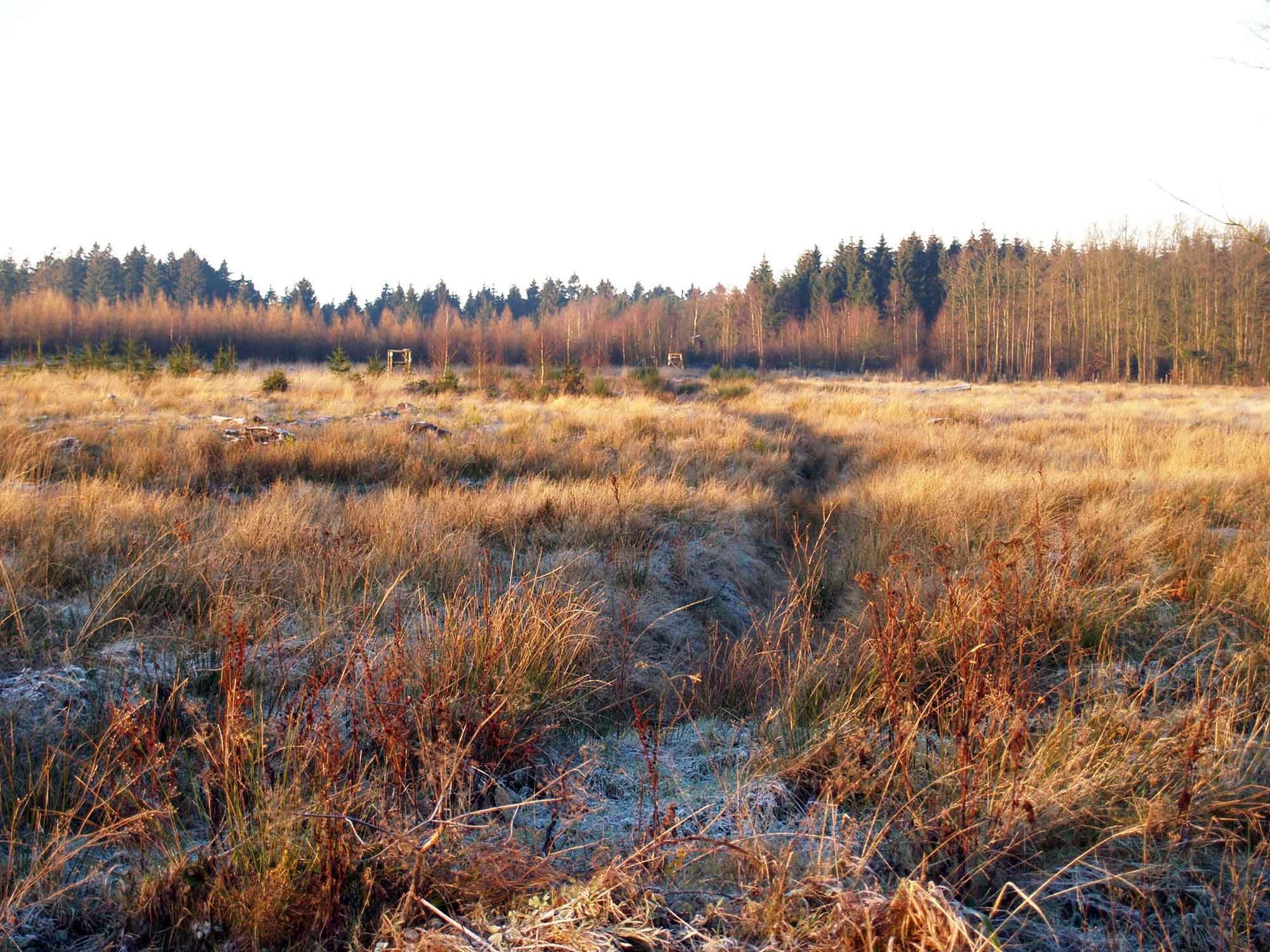 ardenne residences derrières 4190 region landscapes werbomont