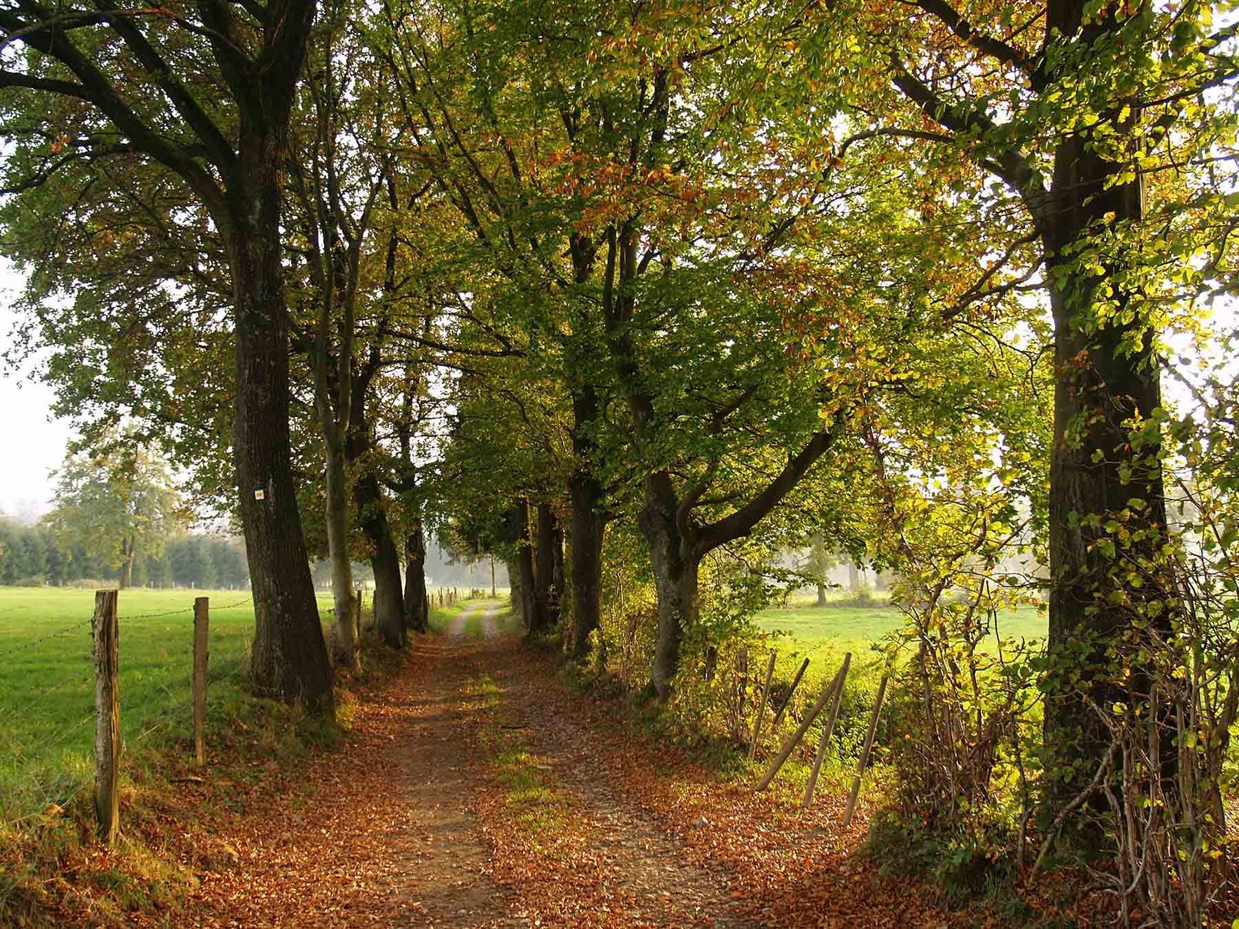 ardenne residences malmedy 4960 region landscapes thirimont walks