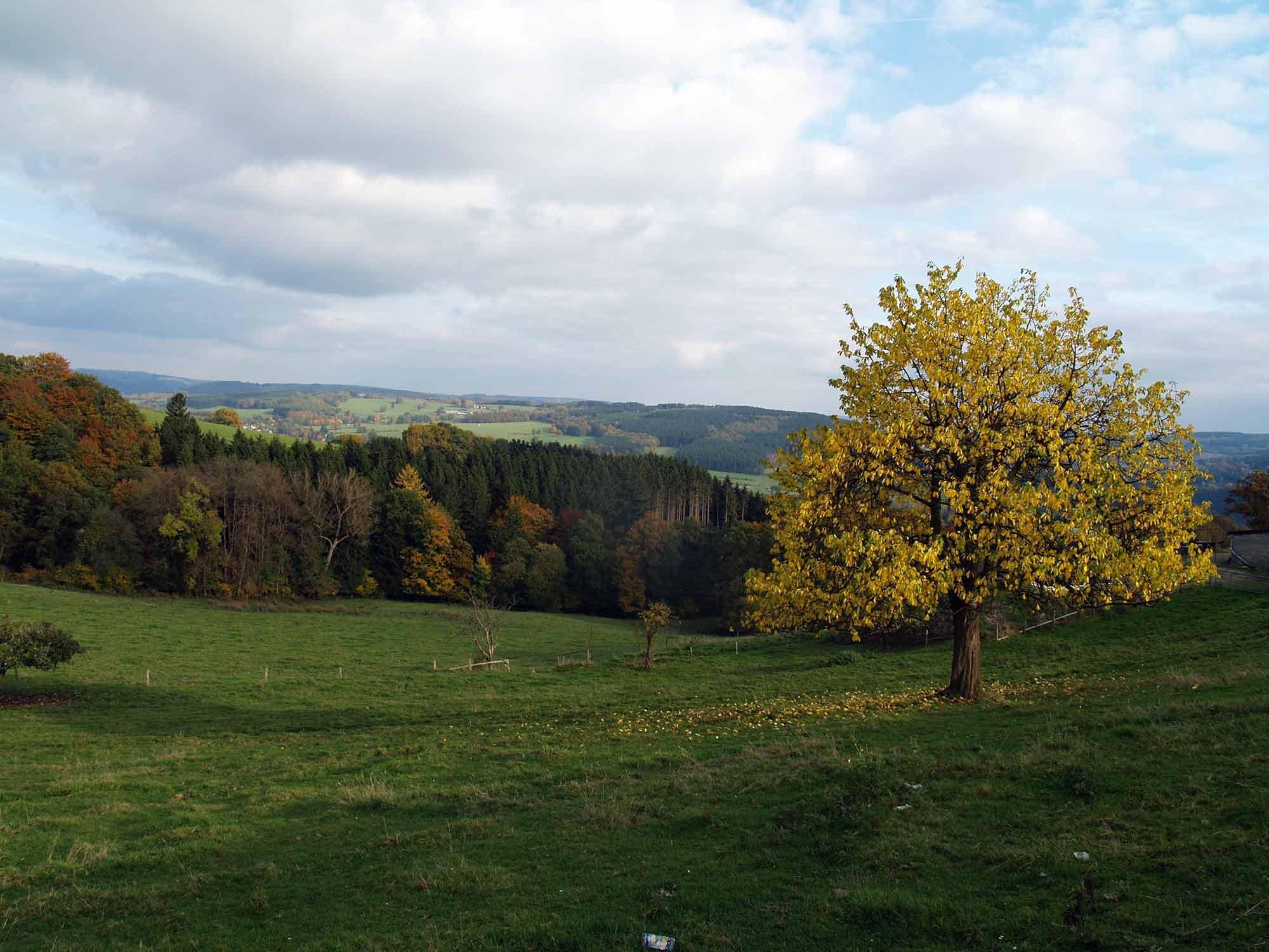 ardenne residences stavelot 4970 region landscapes nature