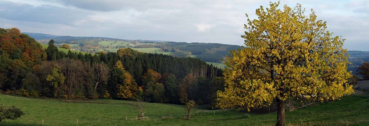 ardenne residences stavelot 4970 region landscapes nature
