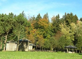 ardenne residences vielsalm 6690 region landscapes nature woods