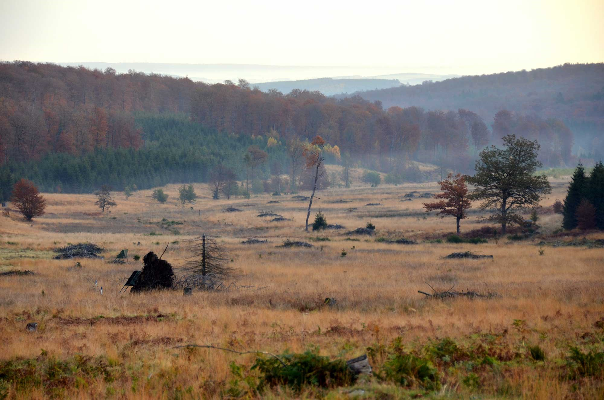 ardenne residences saint-hubert 6870 region landscapes fens fall
