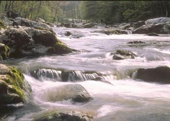 ardenne residences aywaille 4920 region landscapes ninglinspo walk