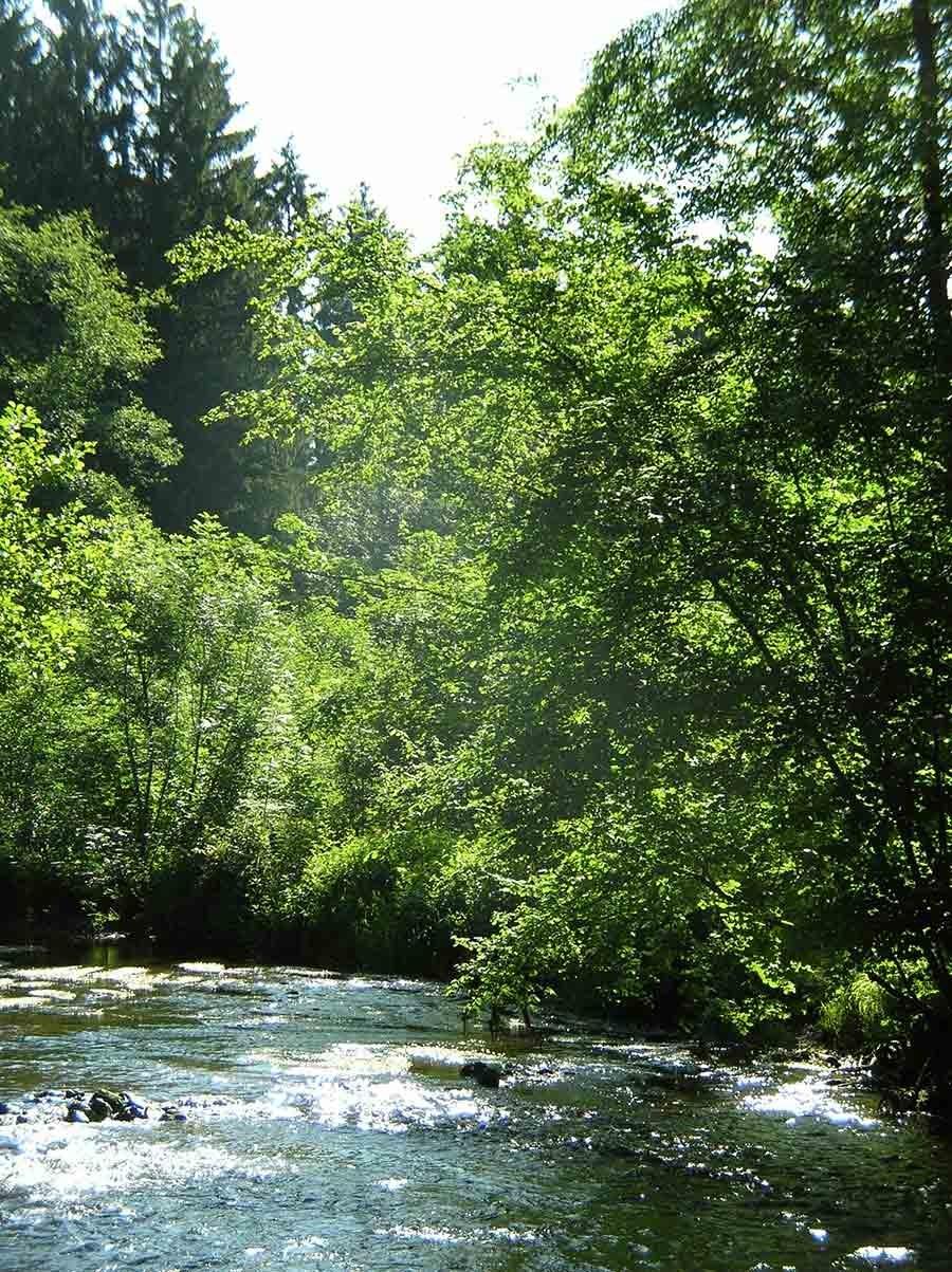 ardenne residences daverdisse 6929 landscapes nature lesse river