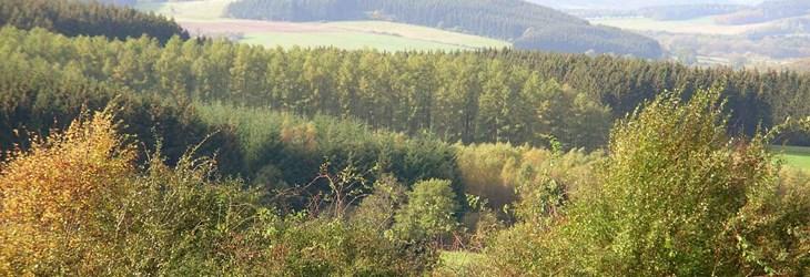 ardenne residences nassogne 6950 region landscapes view